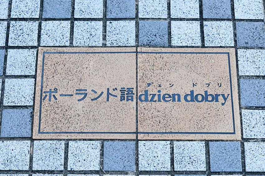 f0077849_20101964.jpg