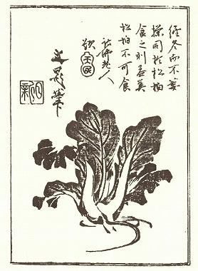「江戸の食文化」第九回模擬試験問題 _c0187004_2036010.jpg