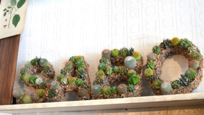 サボテン・多肉植物ワークショップのご報告_d0263815_1644973.jpg