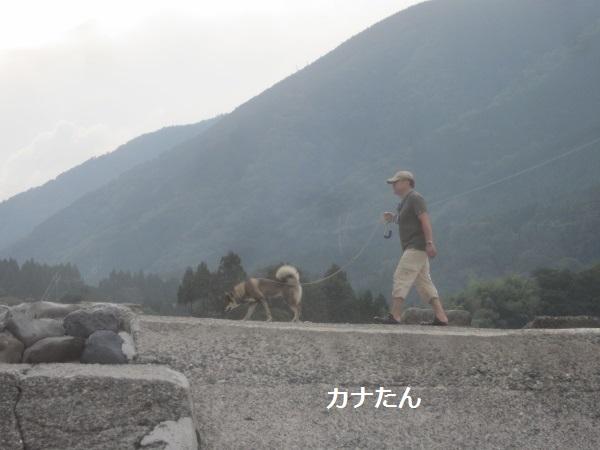 f0143123_2011584.jpg