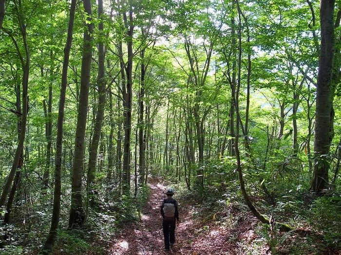 9.13-14 谷川岳で寝るハイク day2_b0219778_23302249.jpg