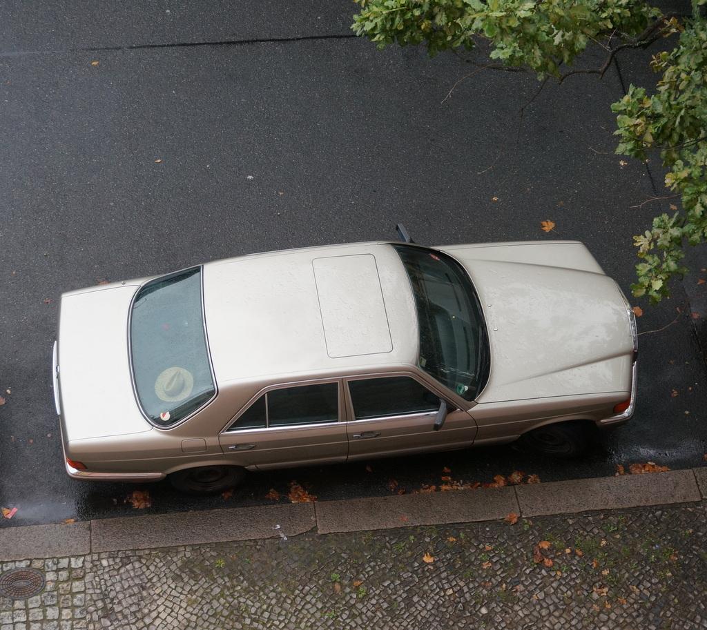MercedesBenz W126_c0180686_06030284.jpg