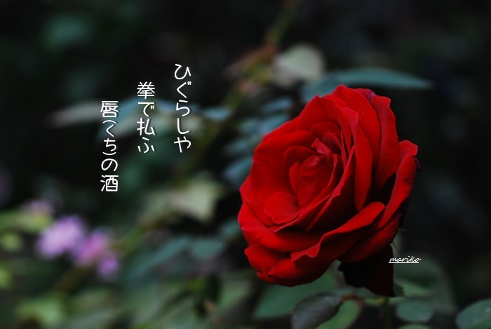 f0053297_1432344.jpg