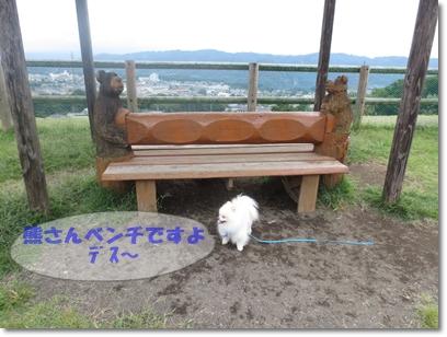 b0167519_159647.jpg