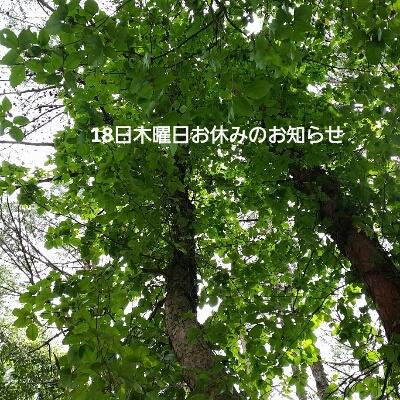 b0141625_2222352.jpg