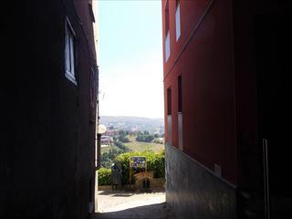 Asturias旅行7ーTineo_e0120938_00462622.jpg