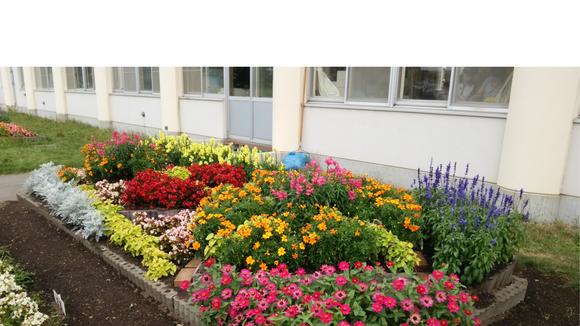 第22回 学校花壇コンクール受賞校をご紹介します_e0145841_11213564.png