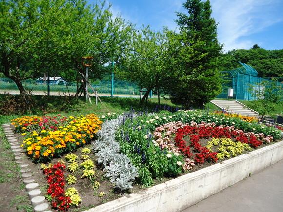 第22回 学校花壇コンクール受賞校をご紹介します_e0145841_1144492.jpg
