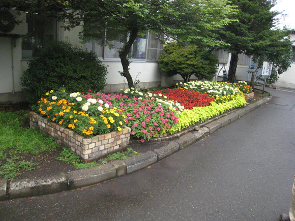 第22回 学校花壇コンクール受賞校をご紹介します_e0145841_11502167.jpg
