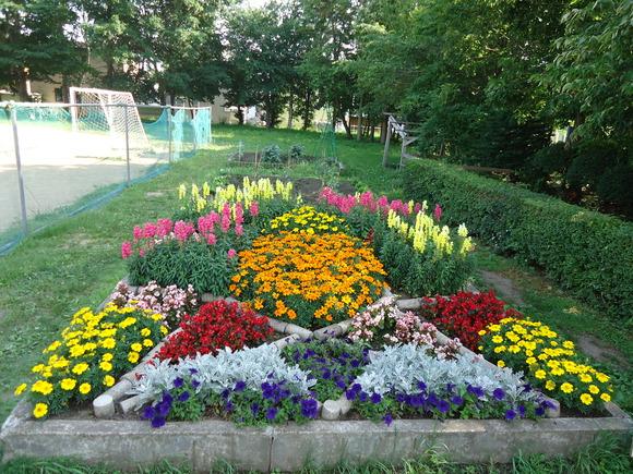 第22回 学校花壇コンクール受賞校をご紹介します_e0145841_12145671.jpg