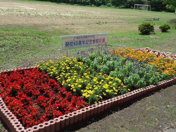 第22回 学校花壇コンクール受賞校をご紹介します_e0145841_12403635.jpg