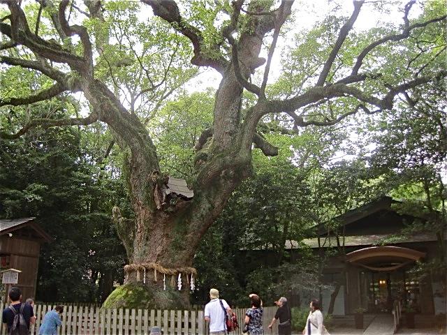 神さんを訪ねて〜熱田神宮_d0101846_6332699.jpg