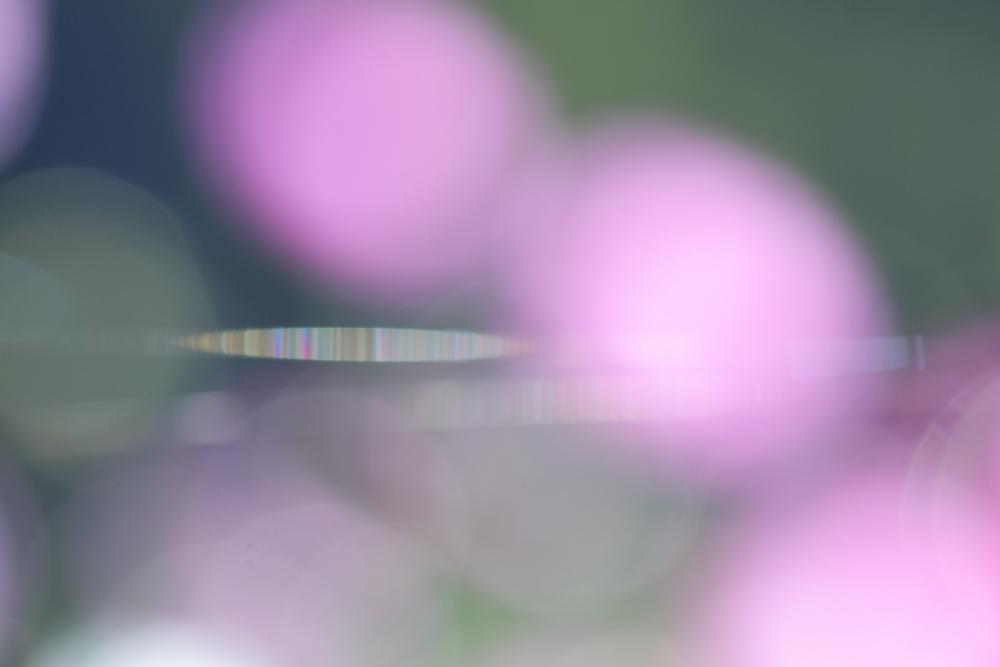 c0146251_1931223.jpg