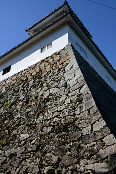 彦根城写真_e0171573_19105068.jpg