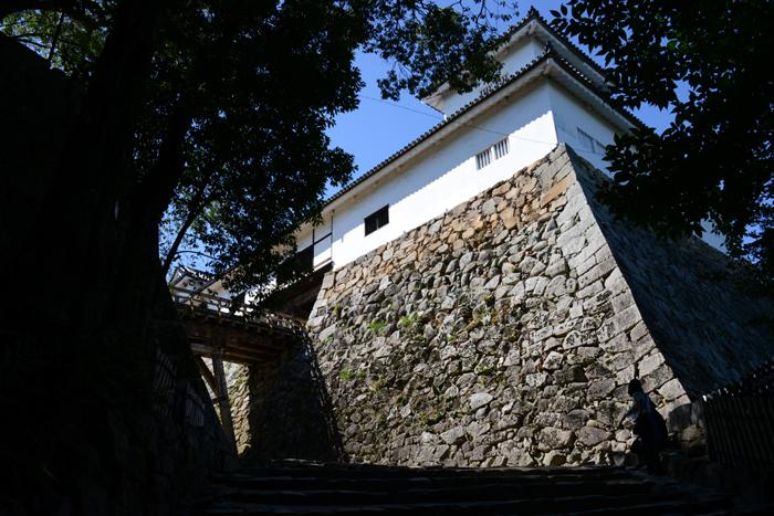 彦根城写真_e0171573_19105872.jpg