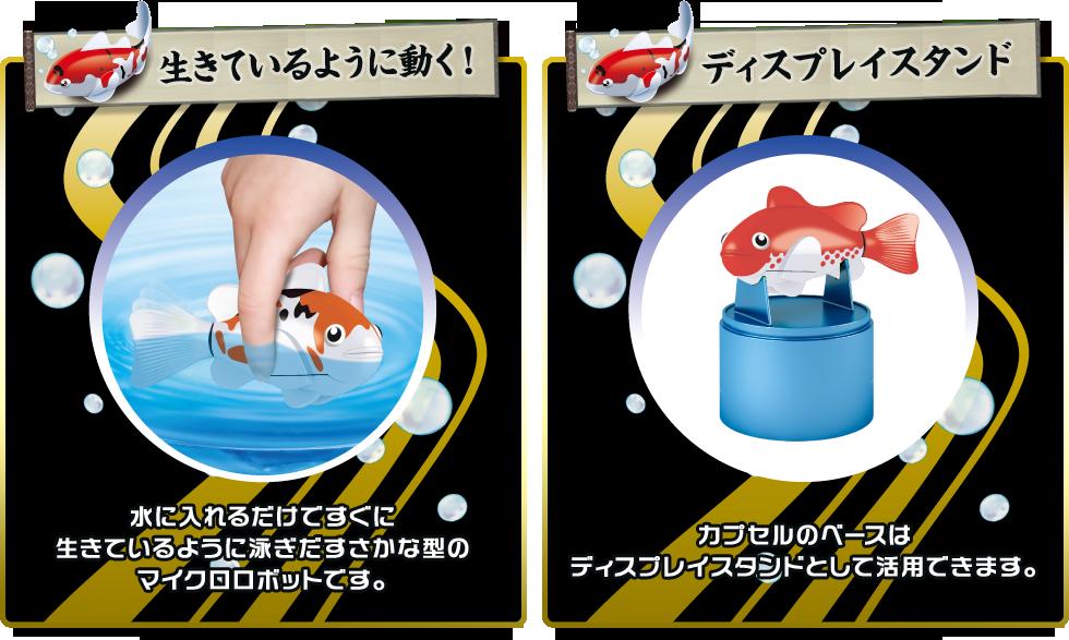 おもちゃシリーズ 『ロボフィシュ』を愉しむ_b0011584_10300484.png
