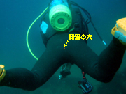 b0174352_11143751.jpg