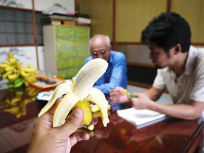 熊本産パイナップル 9月18日(木)テレビタミンで「田代農園」さん生中継決定!!_a0254656_18254944.jpg