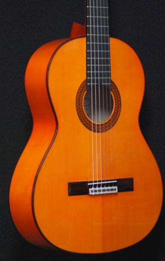 フラメンコギターの新風となるか・・・アマリア・ブルゲ_c0330563_1615157.jpg