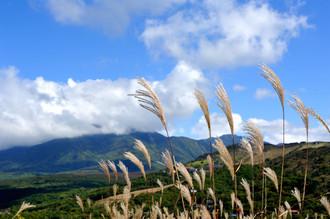 長野県の駒ケ岳に行く予定が・・・_c0330563_16203696.jpg