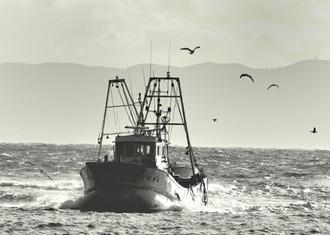 知多の漁船_c0330563_1621334.jpg
