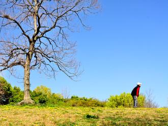 近くの公園 その1_c0330563_16221014.jpg