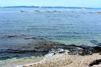 島巡りツァーに参加しました_c0330563_1622597.jpg