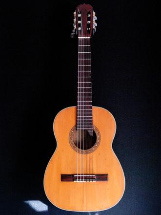 昭和初期のレギントギター_c0330563_16244277.jpg