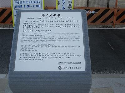 f0259373_19494318.jpg