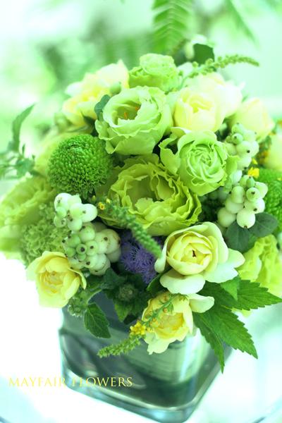 この夏の花♪_d0000304_12264781.jpg