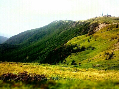 登山_e0254750_19465793.jpg
