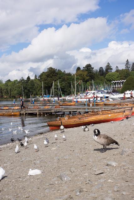 ウィンダミア湖畔を散歩_a0257652_1271336.jpg