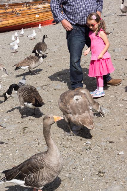 ウィンダミア湖畔を散歩_a0257652_1285563.jpg