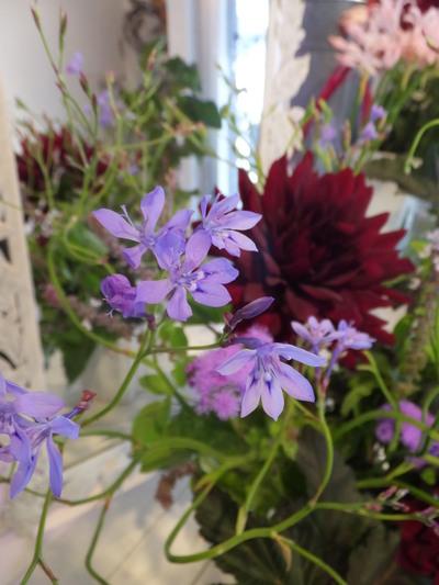 オークリーフ花の教室(赤地さんと宮原さんの作品)_f0049672_17374712.jpg