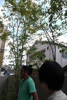 萬葉さんのお庭見学とお話し会_a0233896_11392148.jpg