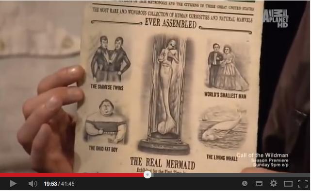 人魚の新たなる証拠「Mermaid New Evidence」3:ネアンデルタール人が海底原人化した説!?_e0171614_8291543.png