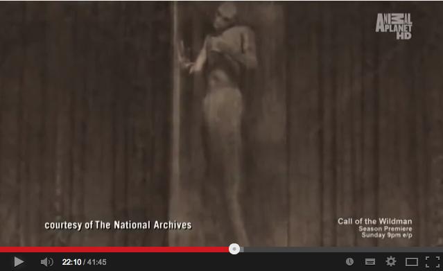 人魚の新たなる証拠「Mermaid New Evidence」3:ネアンデルタール人が海底原人化した説!?_e0171614_8474456.png