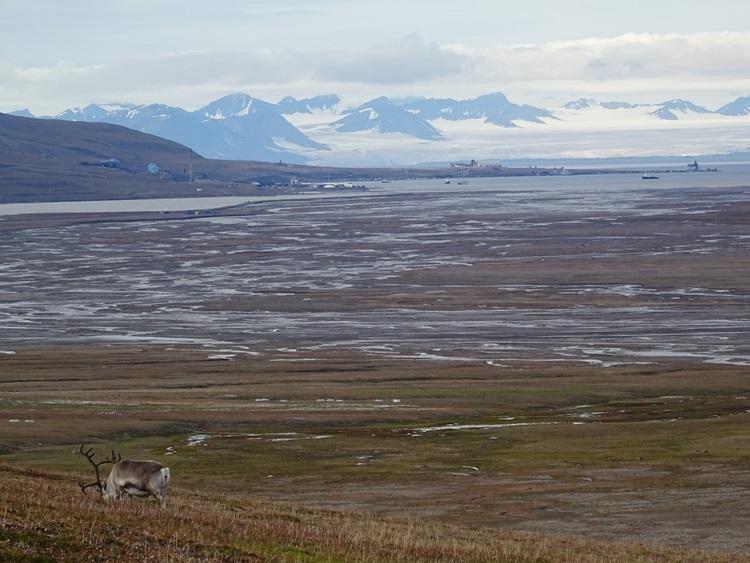 Svalbard(スヴァールバル諸島)ハイキング_e0182138_19161257.jpg