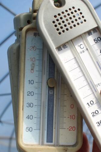 朝の気温が3℃_c0110869_1463498.jpg
