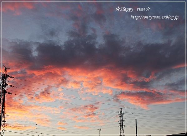 生姜焼き弁当と夕空♪_f0348032_18534452.jpg