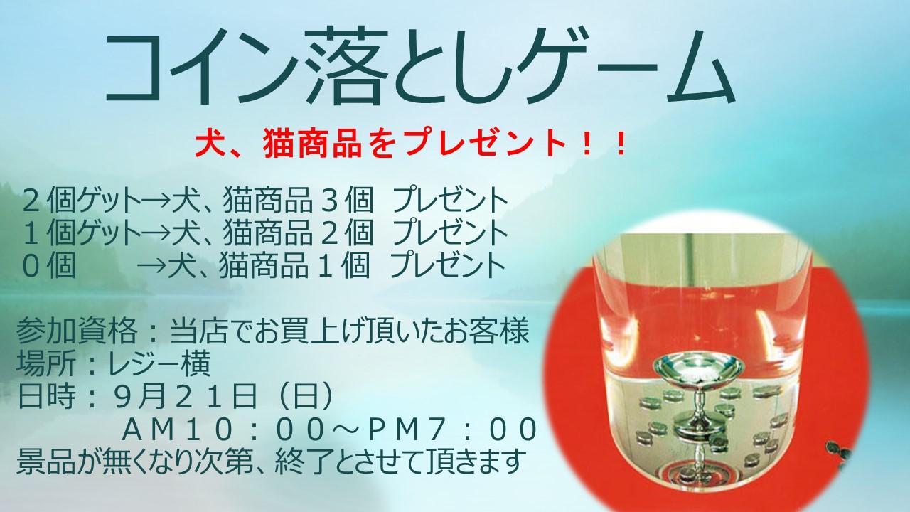 140920 イベント告知_e0181866_10121599.jpg