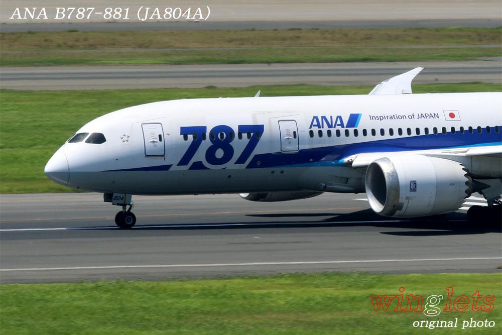'14年 羽田(RJTT)レポート・・・ANA/JA804A_f0352866_22212381.jpg