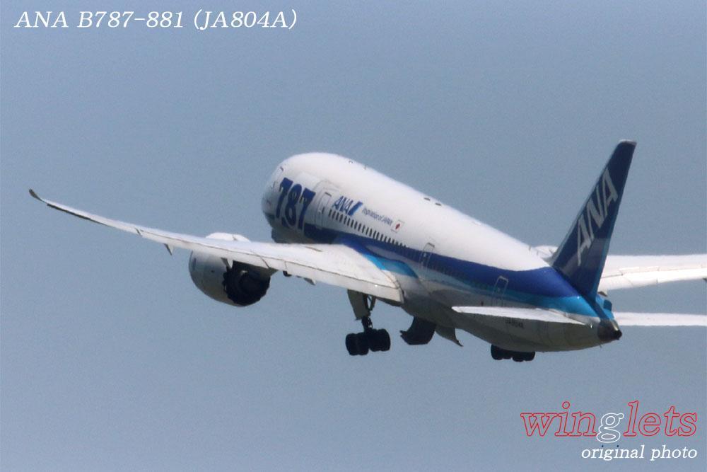 '14年 羽田(RJTT)レポート・・・ANA/JA804A_f0352866_22221616.jpg