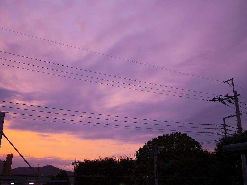 紫色の朝焼け_f0138807_2056422.jpg