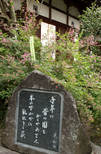 梨木神社 萩まつり_e0048413_18281566.jpg