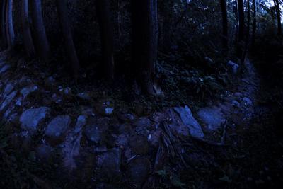 熊野古道での「心身修養」の旅である・・・_b0169522_21435446.jpg