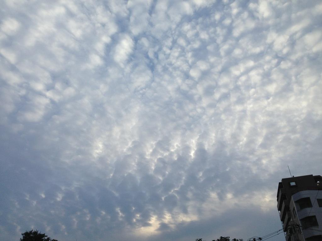 ある日の雲~秋ですねぇ。^^~_b0298740_00003635.jpg