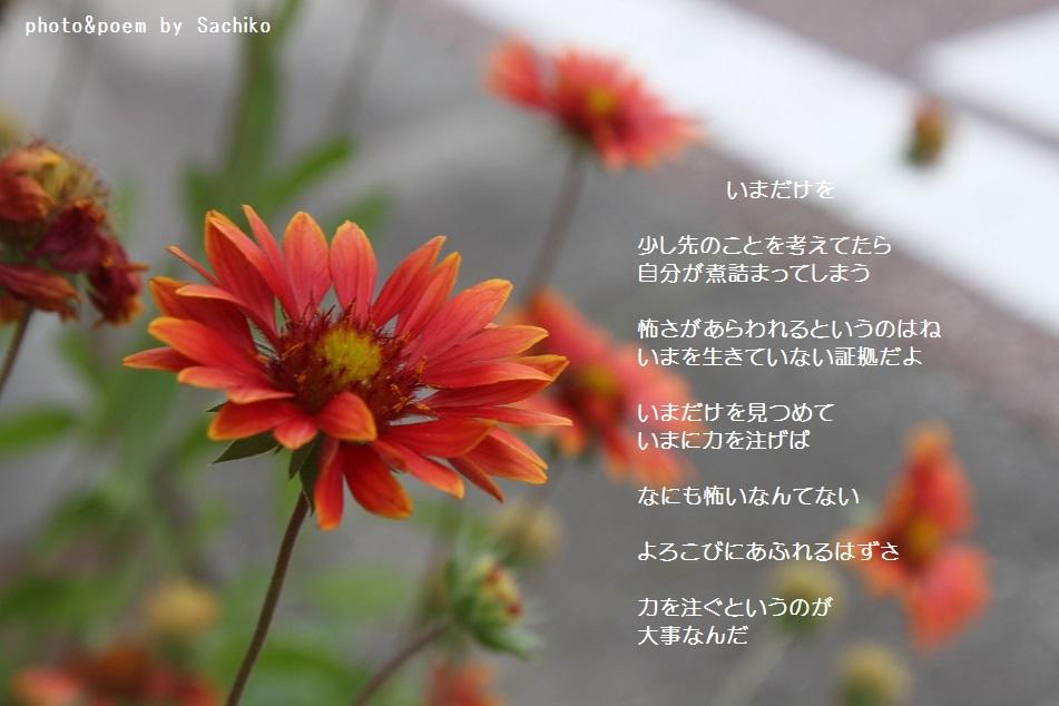 f0351844_09150677.jpg