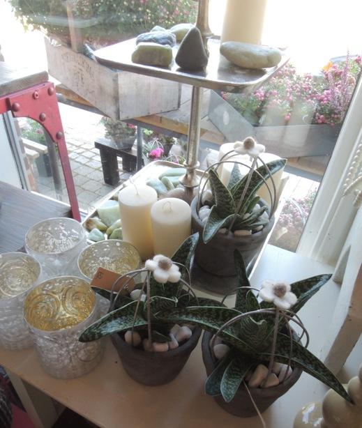デンマークの小さな町の花屋さん・・・Forglemmigej_b0137969_17312717.jpg