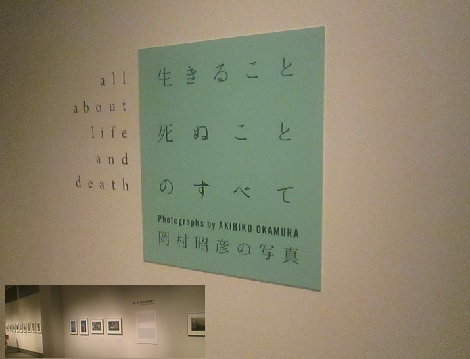 芸術の秋、岡村昭彦の写真展とMLBで、記録達成の話_d0183174_08243812.jpg
